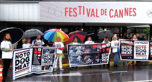 notodogmeat_cannes.jpg